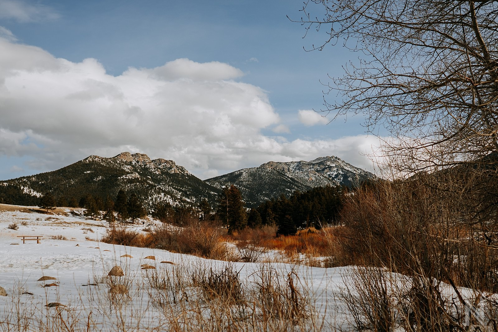 Estes Park and Rocky Mountain National Park landscape photography of Mountains and trees with snow