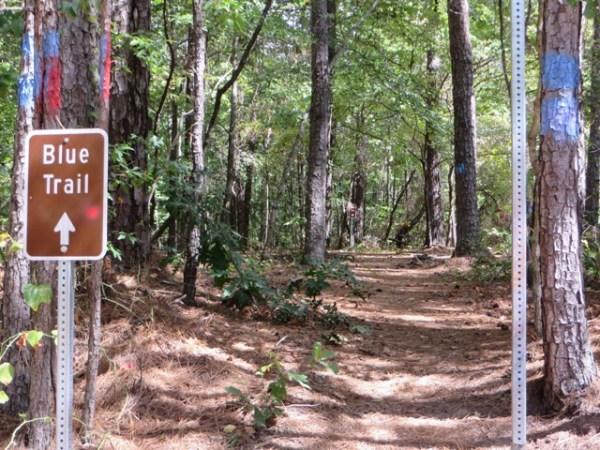 Blue Trail Milton GA Providence Park