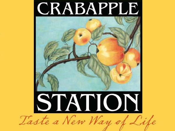 Crabapple Station Of Alpharetta Georgia Townhomes & Homes