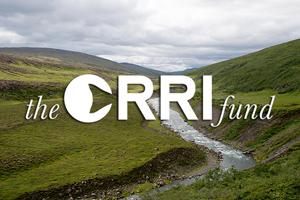 Donate to the Orri Fund