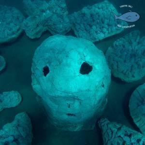bali volunteering artificial reef structure