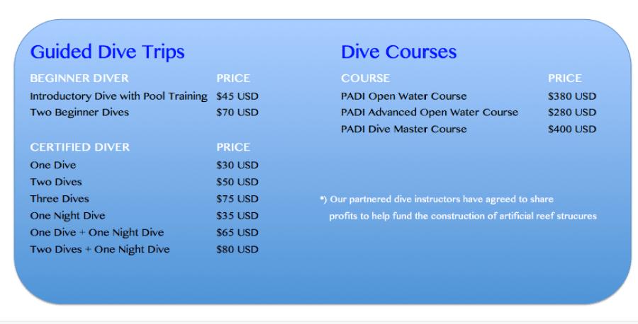bali dive course price
