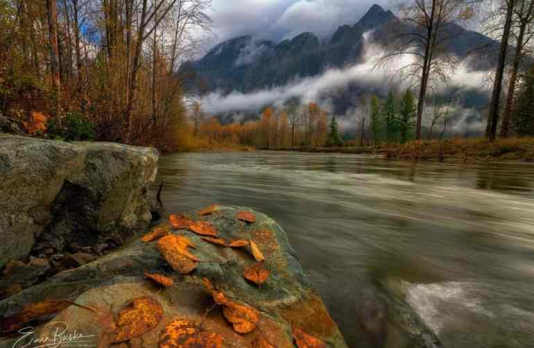 Twin Peaks Mood at North Fork Snoqualmie Clearing