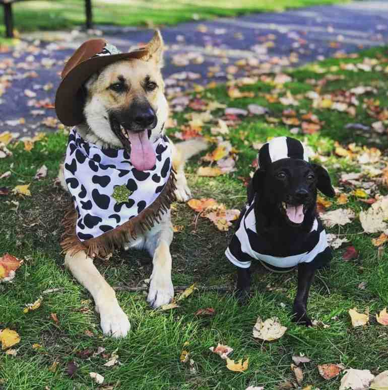 Sigillo Cellars Howl-O-Ween Yappy Hour
