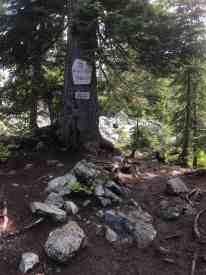 Snow Lake Trail Summit 4400 ft