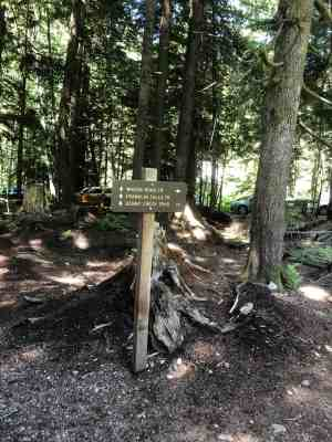 Wagon Road Trail Option to Franklin Falls Junction just after parking lot