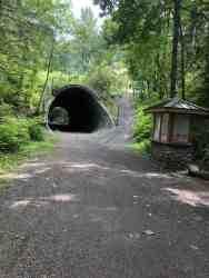 Culvert Under Tokul Road - Looking East