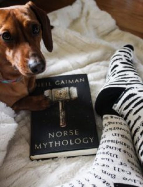 Neil-Gaiman-Norse-Mythology-dachshund-censor-socks
