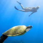 Janice underwater diving