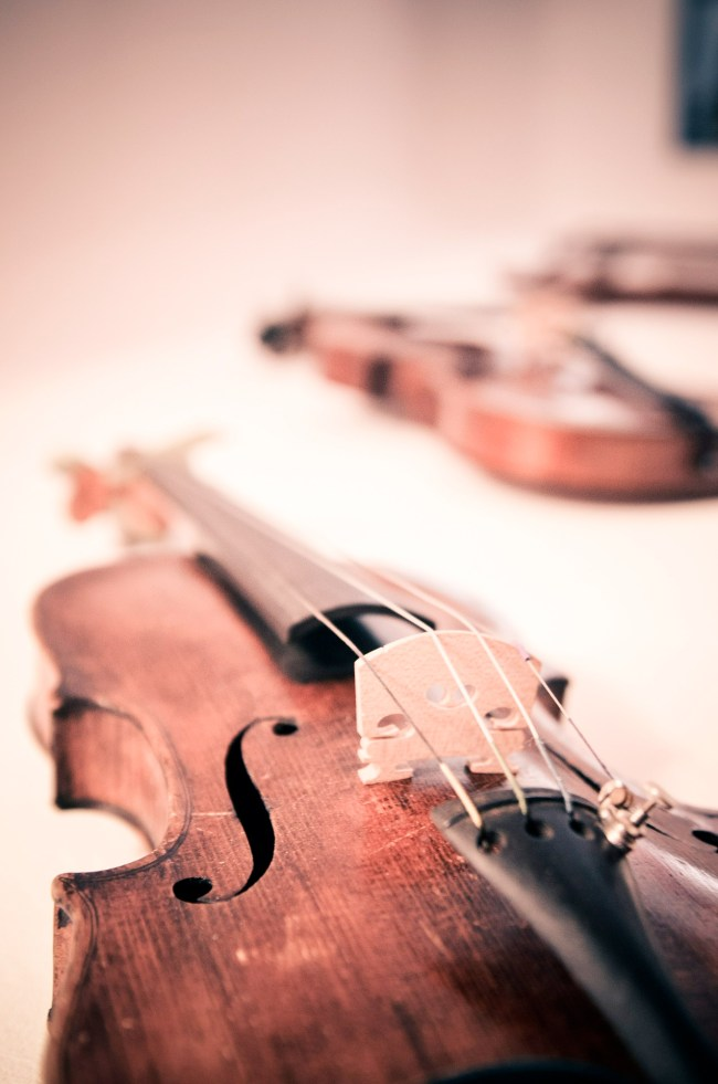 violins-violin-classical-classical music-chamber music-music-north country-musicians-north country chamber players-nccp