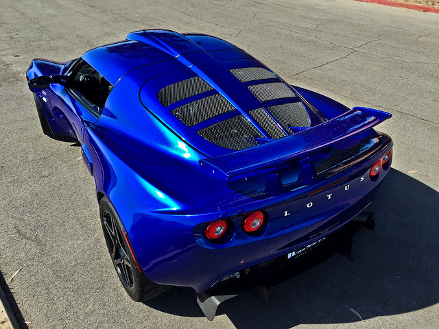 persianblues240lotus1b