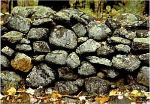 The Stone Walls of Westchester & Fairfield Counties