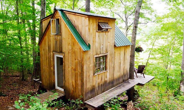 A romantic tiny forest home built in 6 weeks for $4,000