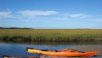 KAYAKING: New Jersey's Batsto River – NORTHEAST EXPLORER