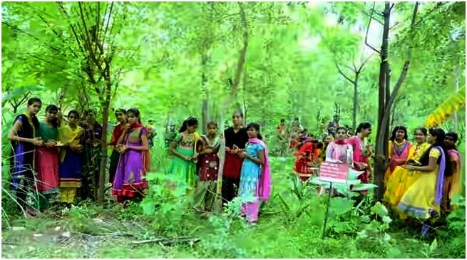 "Village ""Piplantri"" Where 111 Trees are Planted on the Birth of Girl Child"