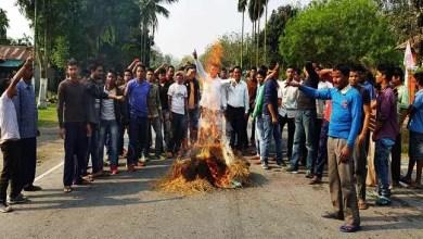Assam : Violence mars 24 hours BTAD bandh
