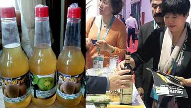 Photo of Arunachal's Kiwi Wine attracts Chinese visitors in Shanghai Expo