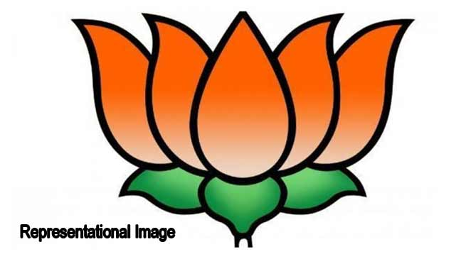 Assam Bypoll: BJP retains 3 Assembly seats, AIUDF gets1 seat