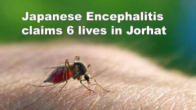 Assam: Japanese Encephalitis claims 6 lives in Jorhat