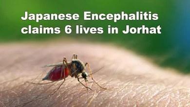 Assam: Japanese Encephalitis claims 6 lives in Jorhat