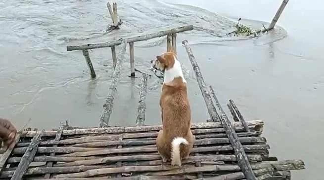 Assam Flood update: 11 dead, 26 lakh affected