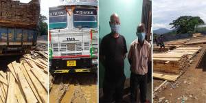 Assam: Timber-laden truck seized in Byrnihat, 2 persons apprehended