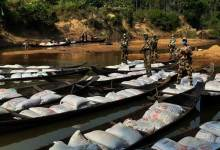 Meghalaya: BSF seized 58 wooden boats with 45,000 kgs of Dry pea