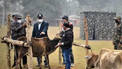 Assam: Indian Army organises veterinary & medical camp at kokrajhar