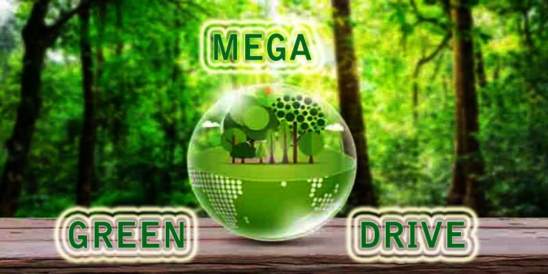 Assam: Mega green drive to be launched in Guwahati