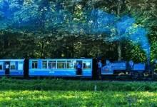 Assam:'steam jungle tea safari' launched by NF railway gaining popularity amongst tourist