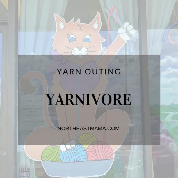 Yarnivore storefront of cat with yarn and blog title
