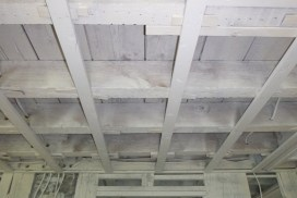 Ceiling-Mold-After