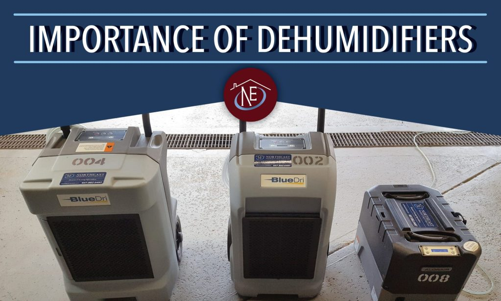 importance of dehumidifiers