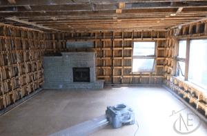 Mold Living Room