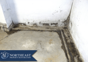 Northeast Property Restoration
