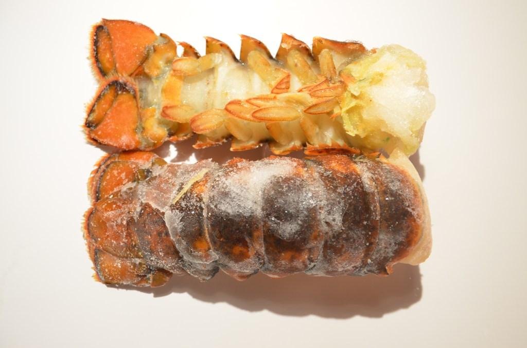 Lobster Tail Cod water