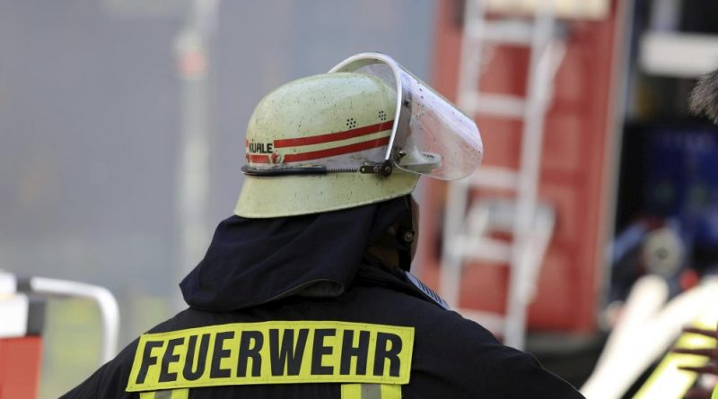 Zebra getötet: Darf die Feuerwehr im Kreis Northeim auch schießen?