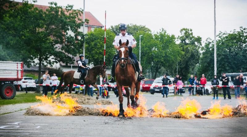 Feuer, Pferd und dumme Sprüche: Tag der Retterinnen 2019 in Northeim