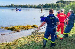 THW und DLRG entfernen am Ufer des Freizeitsees die Wasserpest