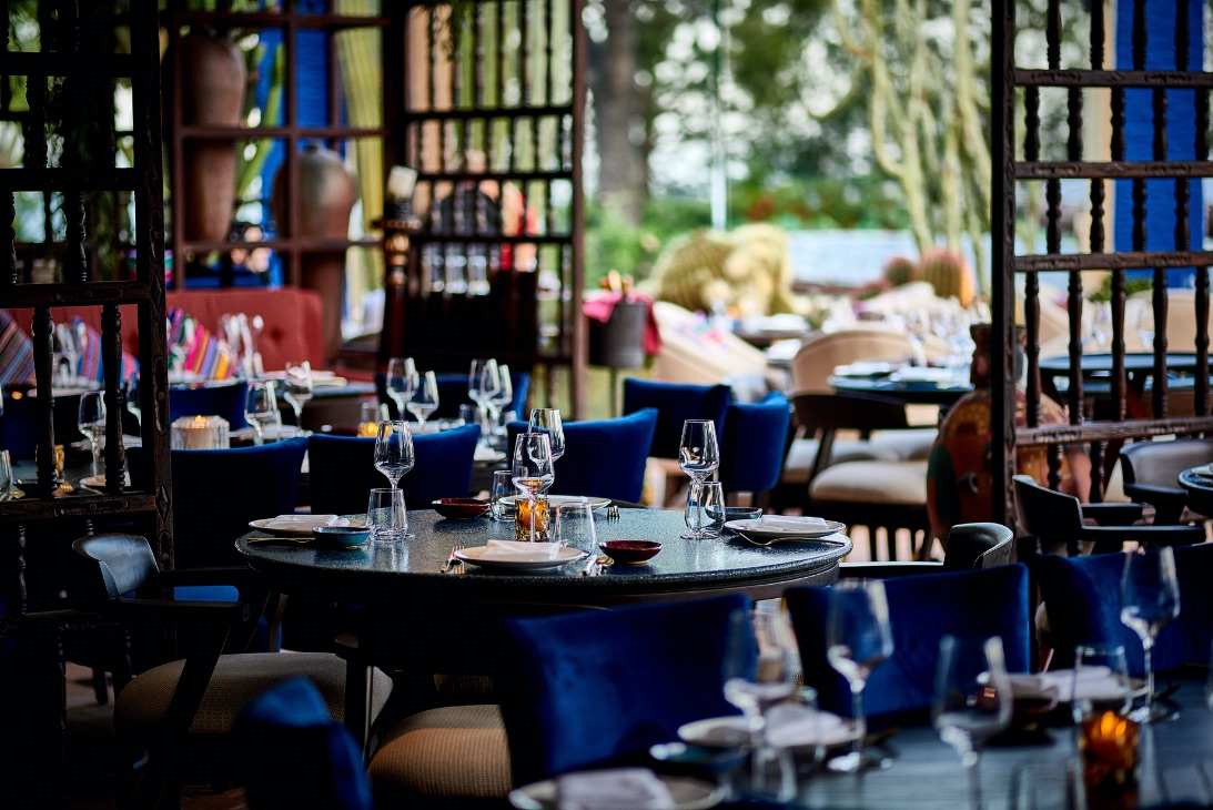 COYA Monte-Carlo | Restaurant & Bar | Northern Lights