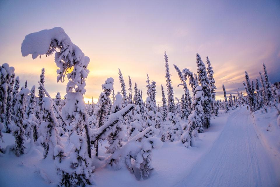 Northern Alaska Environmental Center - Promoting Conservation and Responsible Natural Resource Development