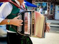2013 : 0062 accordian