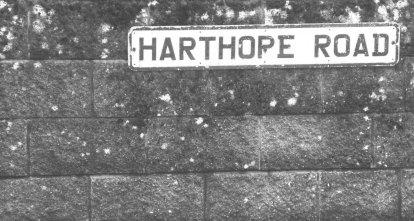 road to harthope moss - st johns chapel