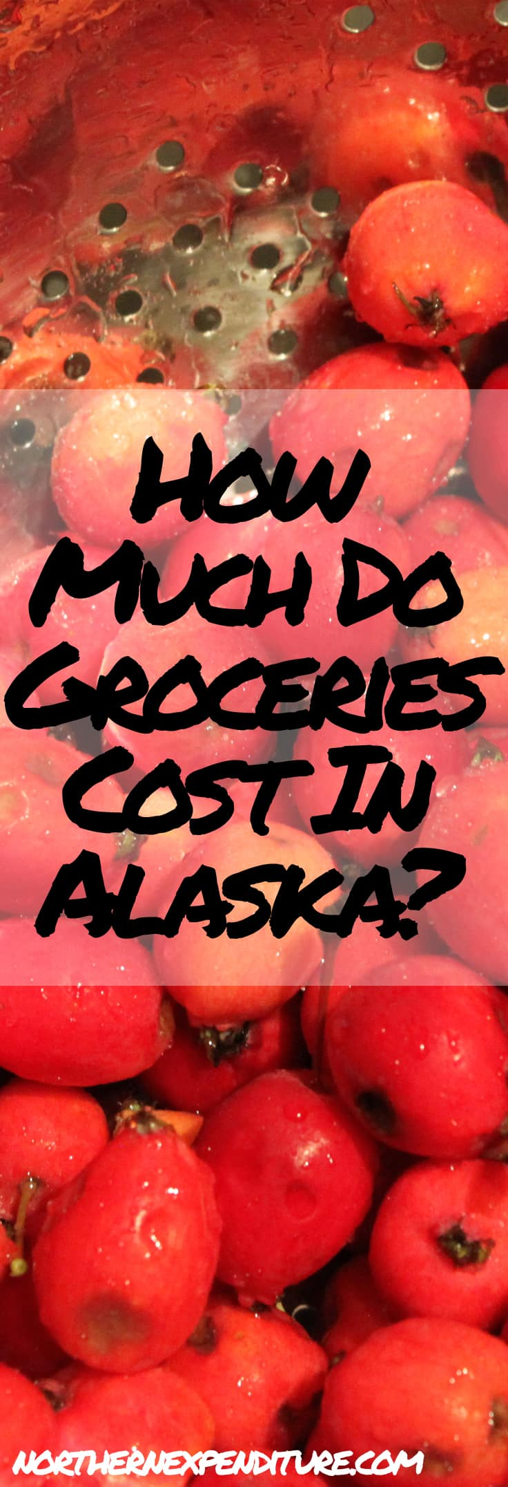 how much do groceries cost in alaska northern expenditure
