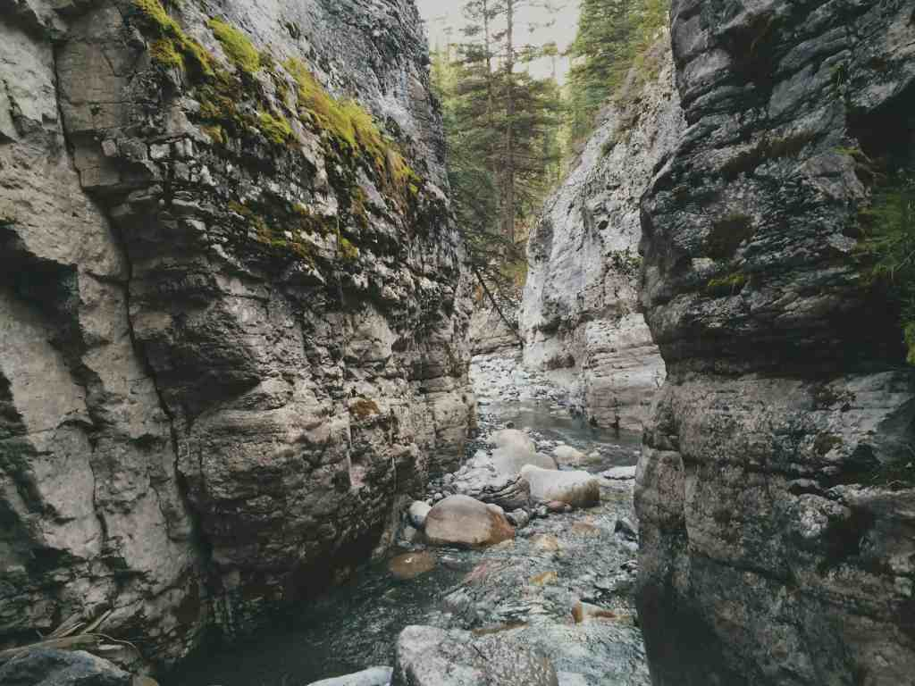 Northern Identity: Jasper 2015