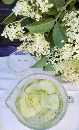 Elderflower and Gin Cooler