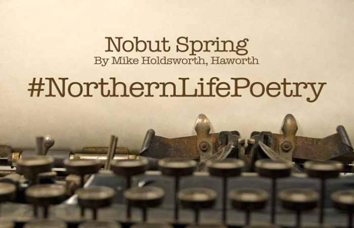 Nobut Spring Poetry