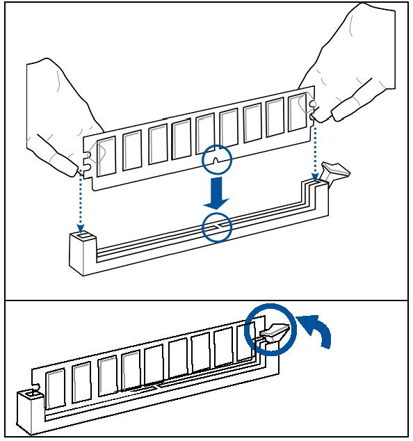 Installing System Memory
