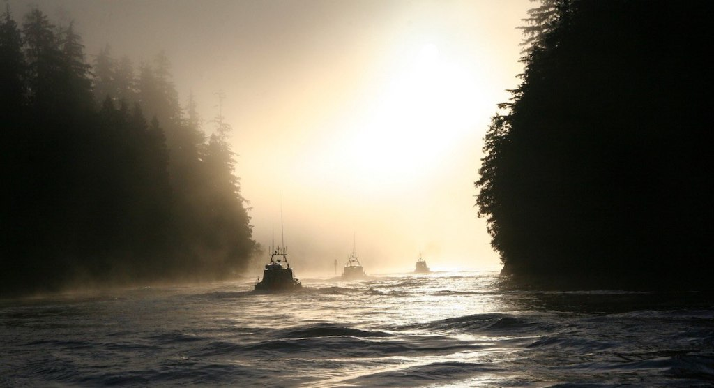 A narrow channel of slightly wavy water with tall evergreens on either side. The sun is to the right behind the trees making everything a silhouette. This includes the three gillneter boats moving out of the mist.