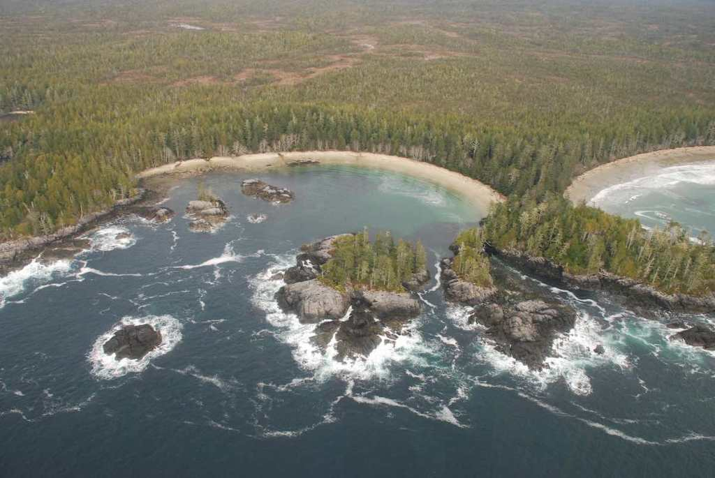 Arial view of Cape Caution with the ocean on the bottom half and evergreen forest covering the upper half. The land has two round inlets and some scattered islands.